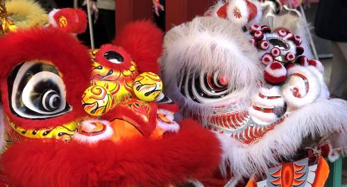 Explore Lunar New Year